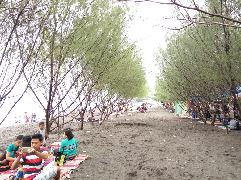 Terakhir Liburan Pantai Cemara Banyuwangi Dipadati Pengunjung Hari Kab