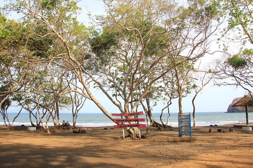 Destinasi Wisata Pantai Grajagan Banyuwangi Harianpost Kab