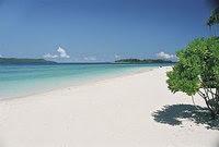 Informasi Wisata Budaya Pantai Grajagan Banyuwangi Bersebrangan Kawasan Cungur Perairanya