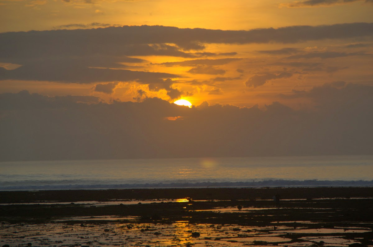 Journey Indonesia Land Banyuwangi Grajagan Terletak Kabupaten Terkenal Sebagai Salah