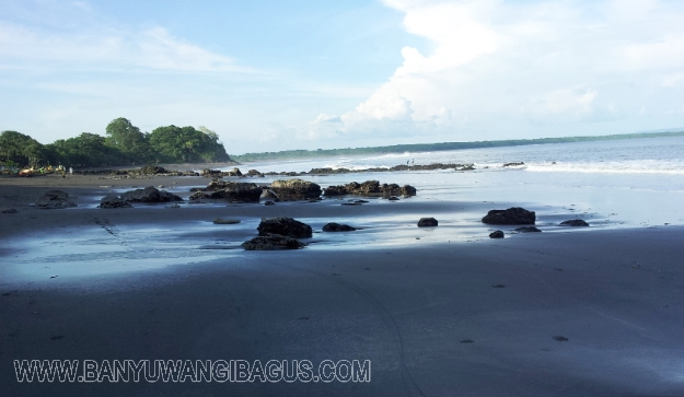 Keindahan Pantai Grajagan Banyuwangi Bagus Benculuk Perjalanan Dilanjutkan Naik Angkutan