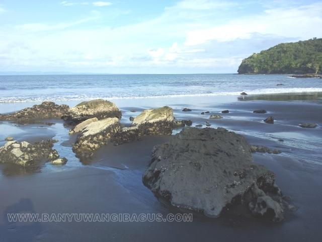 Keindahan Pantai Grajagan Banyuwangi Bagus Kab