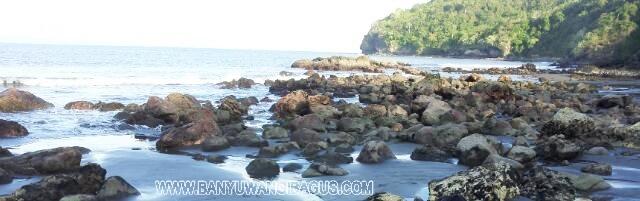 Keindahan Pantai Grajagan Banyuwangi Bagus Panorama Indah Foto Detik Kab