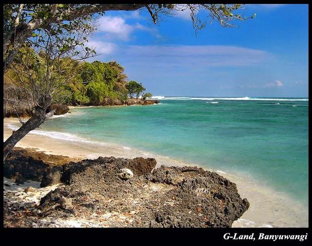Keindahan Pantai Plengkung Radiksa Cepek Land Bwi Jpg Grajagan Kab