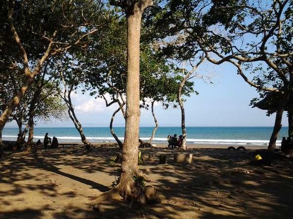 Pantai Grajagan Banyuwangi Banyuwangiku Dot Salah Satu Destinasi Wisata Kabupaten