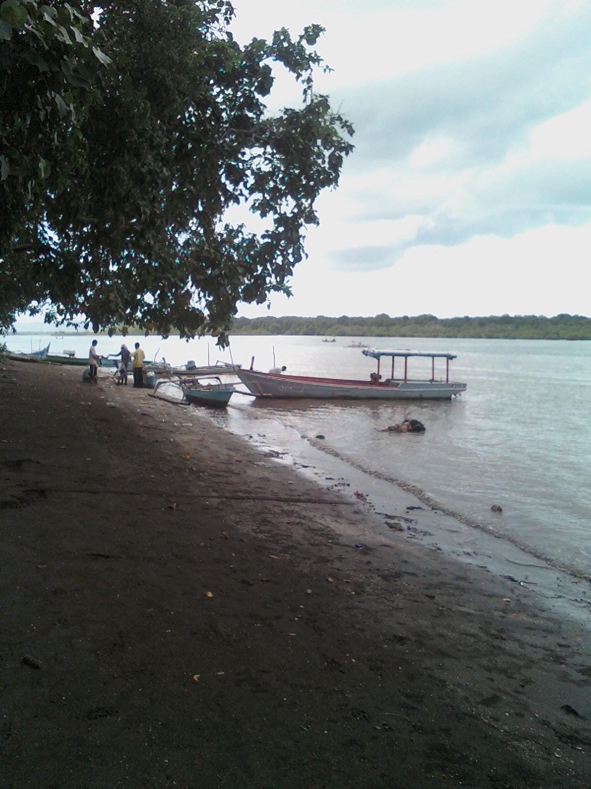 Tempat Mancing Platuk Pantai Grajagan Bagi Informasi Daerah Banyuwangi Salah
