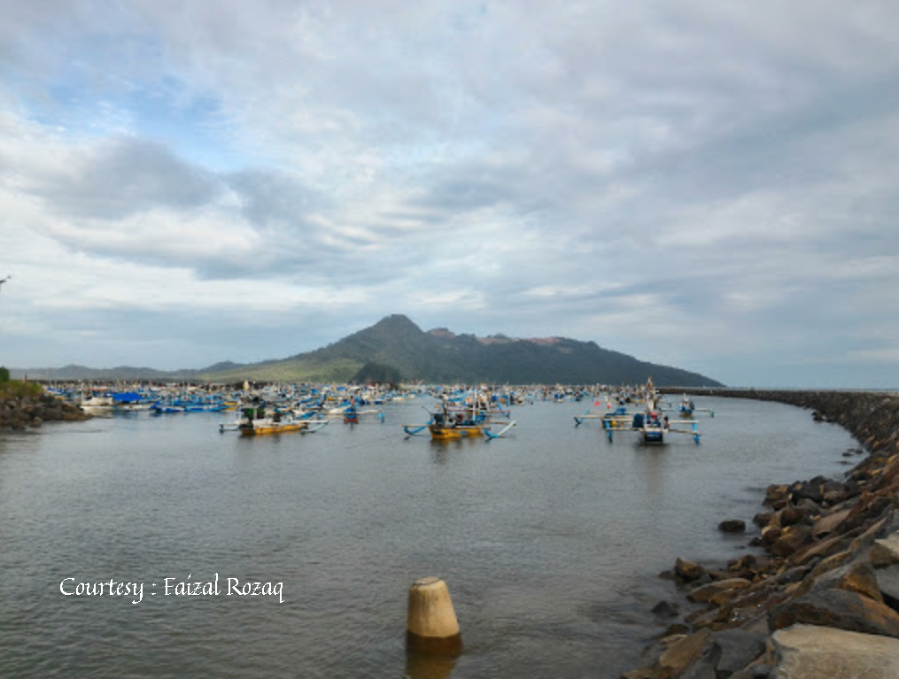 Pantai Pancer Banyuwangi Berwisata Berbelanja Ikan Segar Disini Lampon Kab