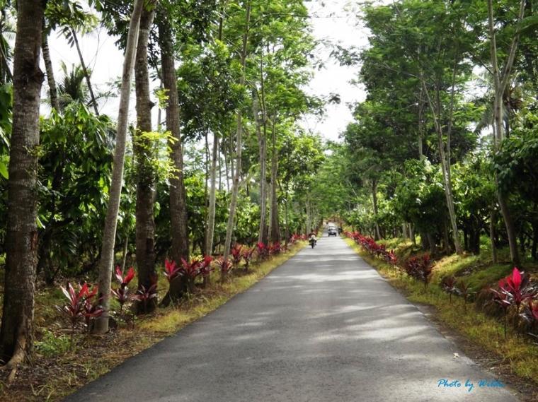 Green Bay Pantai Mustika Berakhir Pulau Merah Oleh Wilda Kab