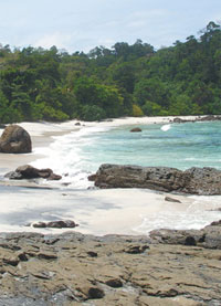 Pantai Mustika Primadona Wisata Banyuwangi Selatan Kaya Biota Laut Jadi