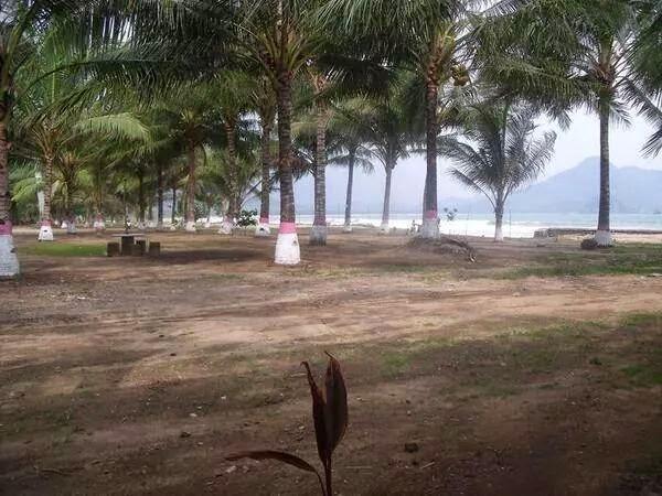 Pantai Mustika Pulau Mustaka Banyuwangi Bagus Kecamatan Pesanggaran Kab