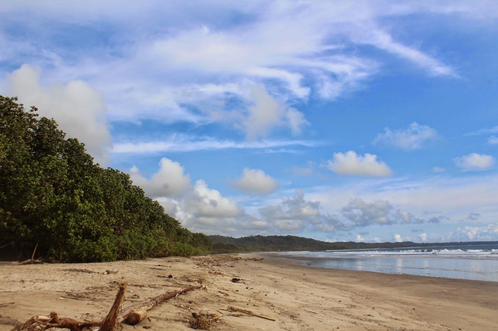 Keindahan Wisata Alam Pantai Ngagelan Banyuwangi Kab