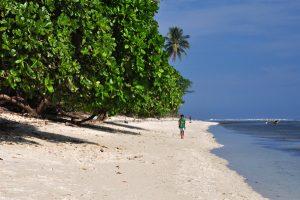 Keindahan Wisata Alam Pantai Ngagelan Banyuwangi Objek Aktivitas Bisa Lakukan