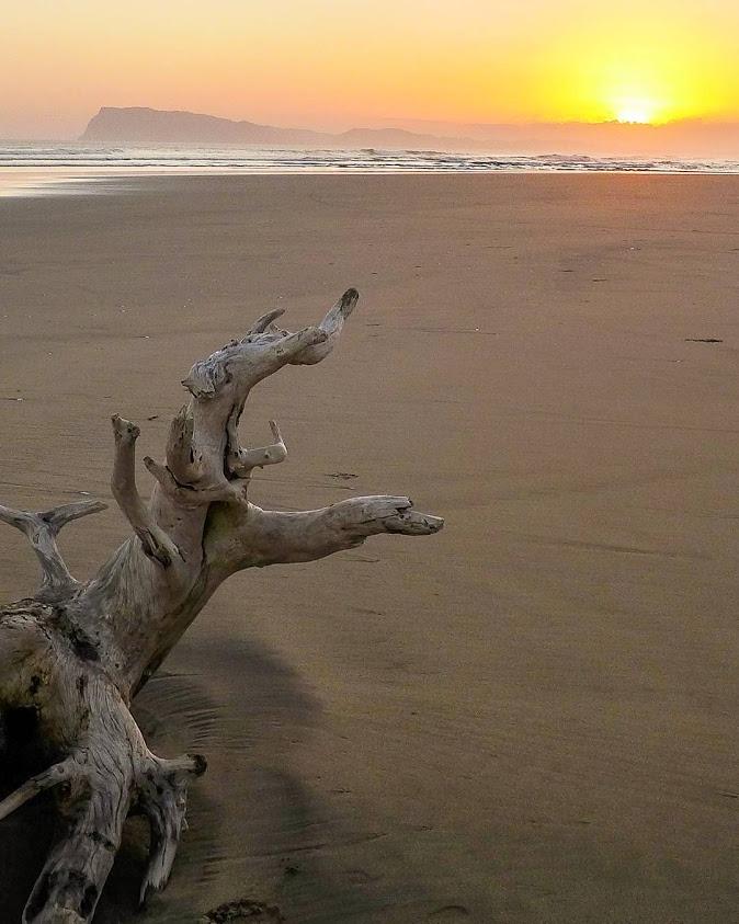 Ngagelan Pesona Pantai Penangkaran Penyu Banyuwangi Sunset Top Kab