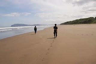 Pantai Ngagelan Surganya Penyu Banyuwangi Bagus Kab