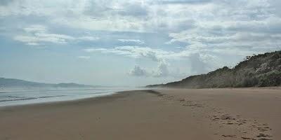 Pantai Ngagelan Surganya Penyu Banyuwangi Bagus Luasnya 19km Kab