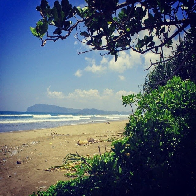 Pantai Ngagelan Surganya Penyu Banyuwangi Bagus Warga Sekitar Alas Purwo