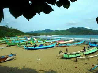 Pantai Rajegwesi Dikeliling Hutan Tropis Taman Nasional Meru Kabupaten Banyuwangi