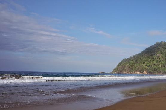 Pesona Pantai Sukamade Banyuwangi Eksotis Wisata Terindah 2018 Ngagelan Kab
