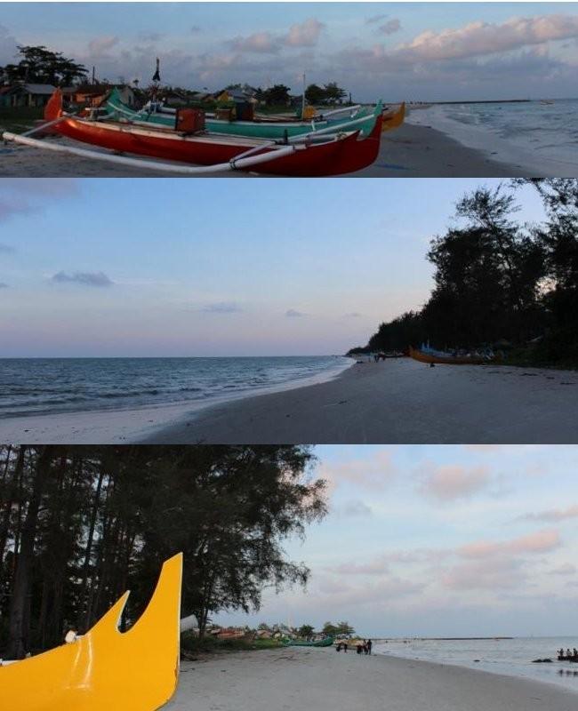 50 Pantai Indonesia 7 Serdang Palu Kuning Kab Banyuwangi