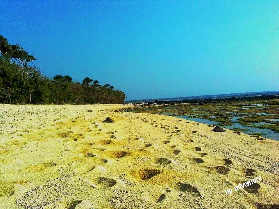 Jejak Kaki Pantai Parang Ireng Banyuwangi Kab