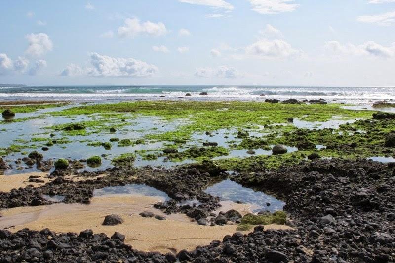Pantai Parang Ireng Jamrudnya Banyuwangi Berikut Foto Kab
