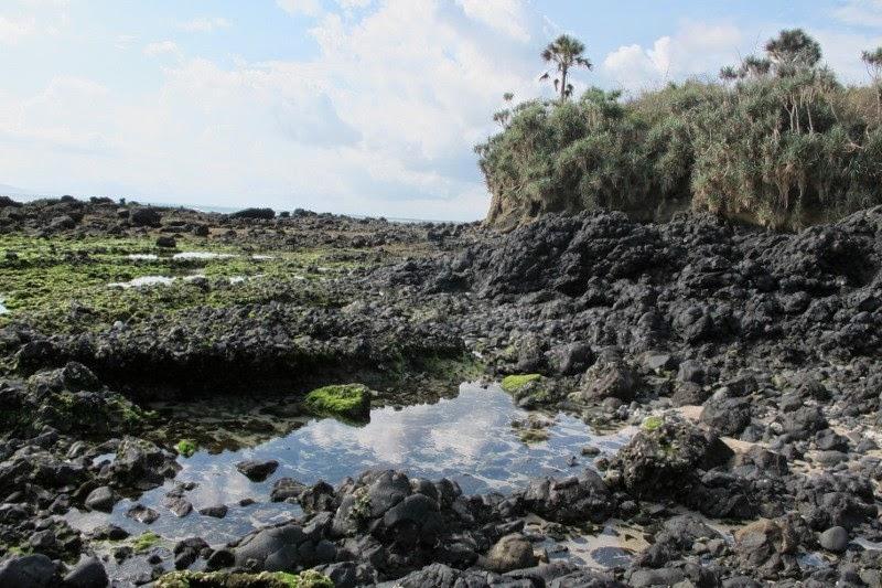 Pantai Parang Ireng Tiga Warna Banyuwangi Bagus Bebatuan Hitam Pinggir