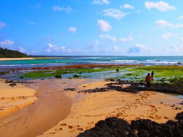Pantai Parang Ireng Tiga Warna Banyuwangi Bagus Siapa Pun Melihatnya