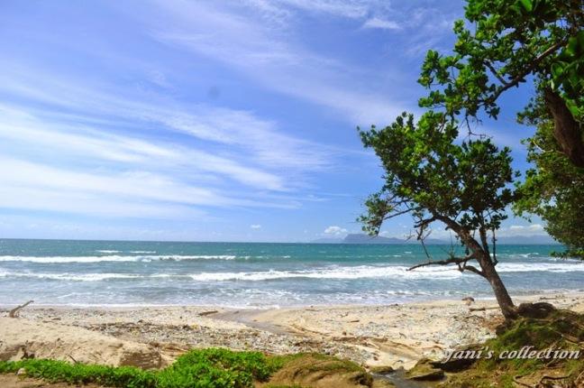 Tourism Banyuwangi Hobikuhobimublog Parang Ireng Pengunjung Datang Pantai Pancur Membawa