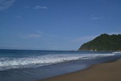 Pantai Sukamade Banyuwangi Banyuwangiku Dot Kab