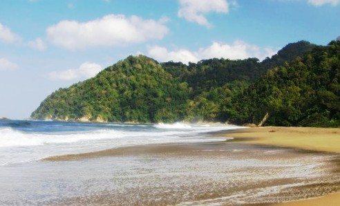 Pantai Sukamade Wisata Sarang Penyu Taman Nasional Meru Banyuwangi Image