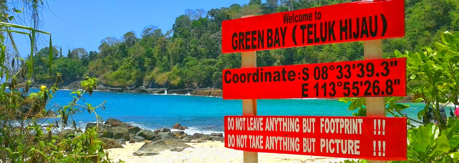 Pantai Teluk Hijau Surga Tersembunyi Banyuwangi Menemukan Papan Berarti Berada