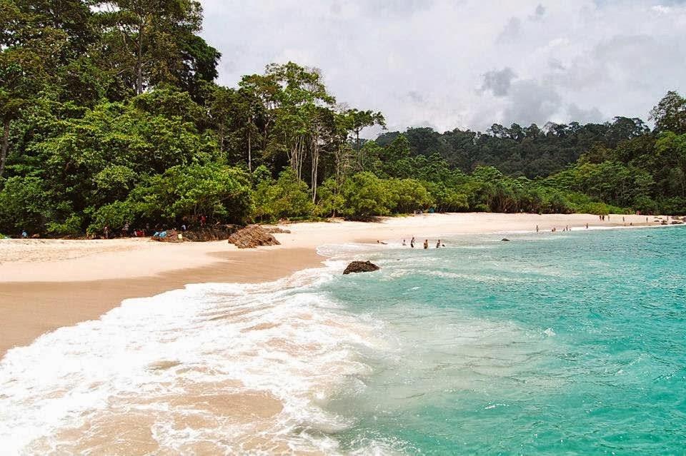 Pantai Teluk Hijau Surga Tersembunyi Banyuwangi Sukamade Kab