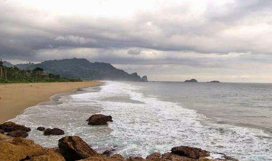 Pesona Keindahan Pantai Sukamade Banyuwangi Daftar Tempat Wisata Kab