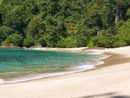 Wisata Misteri Pantai Sukamade Banyuwangi Zednet Objek Indonesia Daerah Sekitar