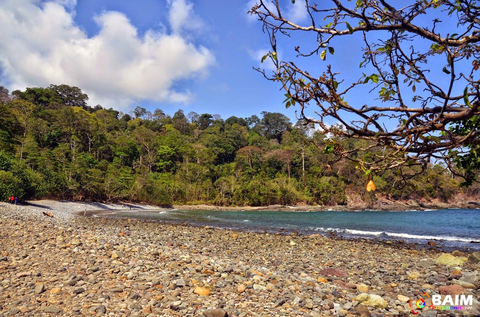 Explore Pantai Teluk Hijau Batu Damai Banyuwangi Wisata Kab