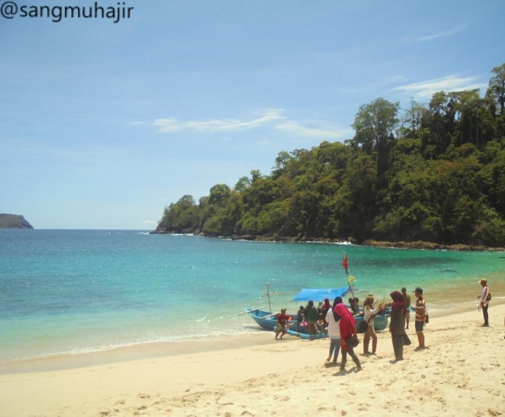 Pantai Rajeg Wesi Teluk Hijau Pesona Keindahan Banyuwangi Jawa Timur