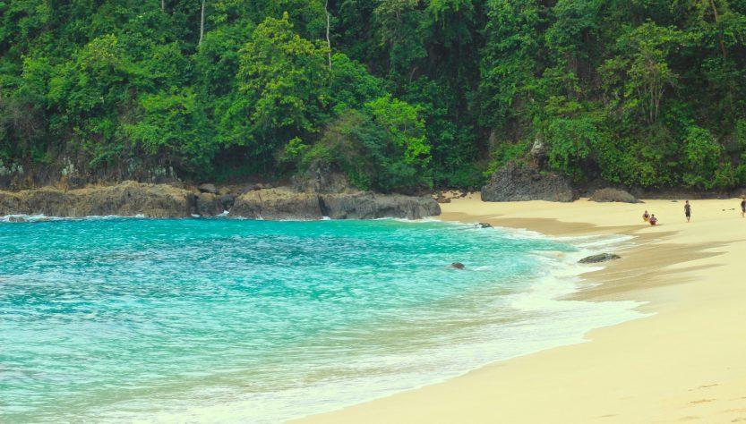 Pantai Teluk Hijau Green Bay Permata Tersembunyi Banyuwangi Kab