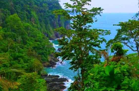 Pantai Teluk Ijo Banyuwangi Green Bay Lokasi Tiket Masuk Sensasi