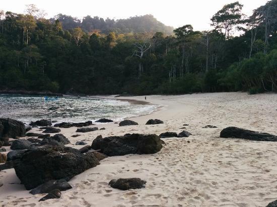 Pemandangan Pantai Teluk Hijau Green Bay Taman Nasional Meru Betiri