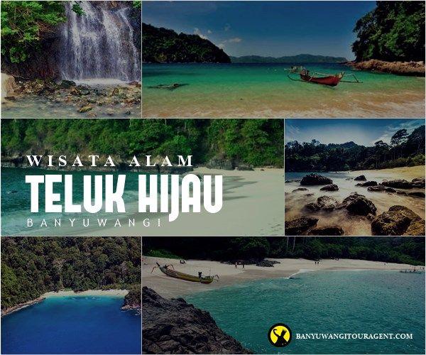 Teluk Hijau Banyuwangi Wisata Pinterest Pantai Kab