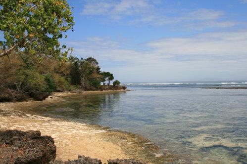 Keindahan Pantai Plengkung Radiksa Cepek Banyuwangi Trianggulasi Kab