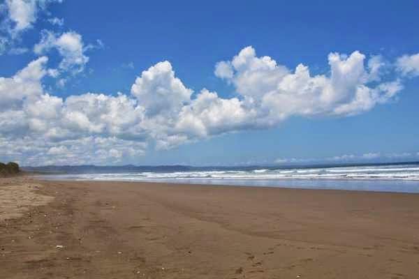 Pantai Ngagelan Surganya Penyu Banyuwangi Keindahan Trianggulasi Kab