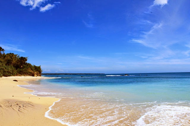 Pantai Pancur Keindahan Tersembunyi Alas Purwo Wisata Jatim Banyuwangi 2