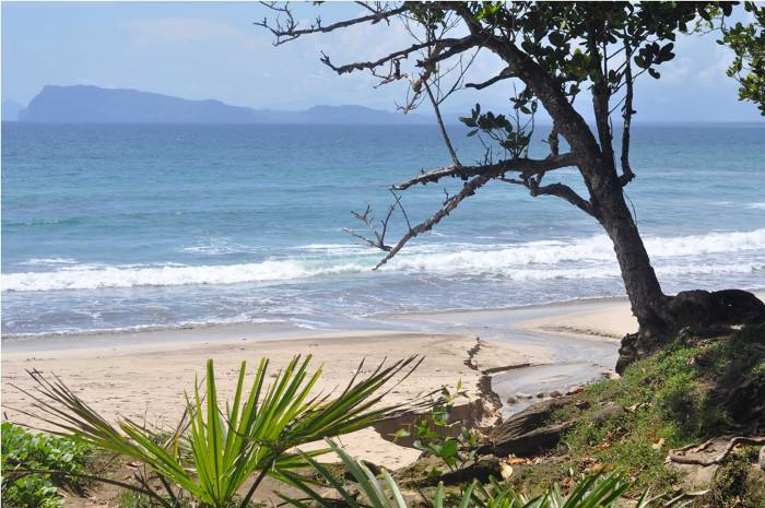 Pantai Pancur Sebuah Keindahan Dibalik Alas Purwo Mistis Yuk Suasana