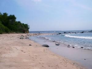 Pantai Pancur Sebuah Keindahan Dibalik Alas Purwo Mistis Yuk Taman