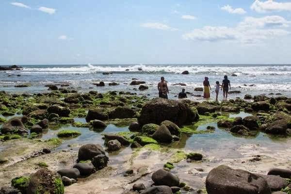 Pantai Pancur Taman Nasional Alas Purwo Banyuwangi Bagus Mempunyai Bentangan