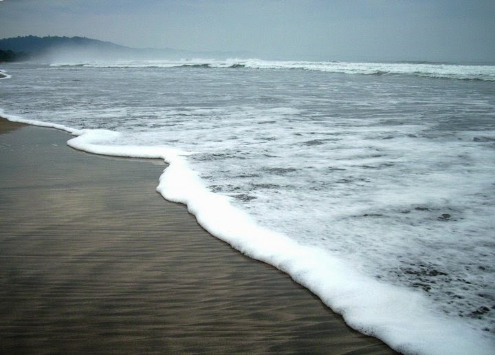 Pantai Trianggulasi Banyuwangi Bagus Kawasan Taman Nasional Alas Purwo Kab