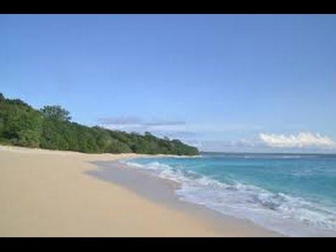 Pantai Trianggulasi Pancur Keindahan Tersembunyi Alas Purwo Trip Adventure Discovery