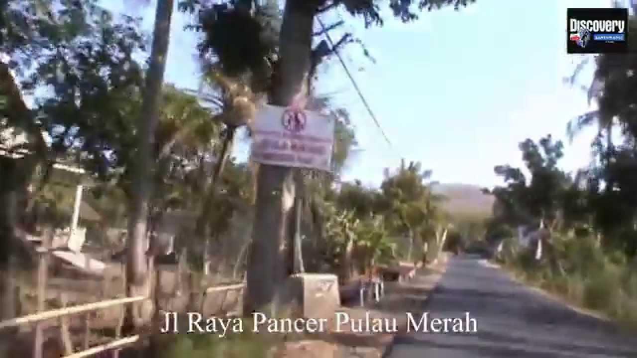 Jalan Jajag Pulau Merah Banyuwangi Youtube Kab