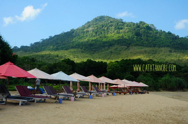 Pantai Pulau Merah Red Island Destinasi Wajib Kabupaten Pemandangan Indah